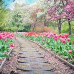 Ładny oraz porządny ogród to zasługa wielu godzin spędzonych  w jego zaciszu podczas pielegnacji.